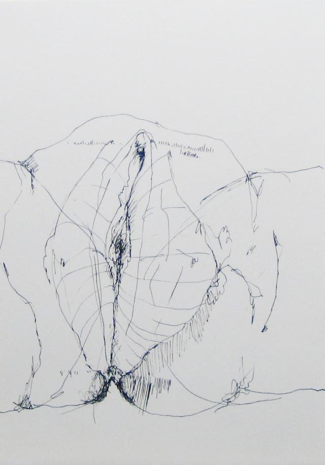 2012-Zeichnung-Sex-26-vulva-muschi-scheide-vagina-Luisa-Pohlmann-Kunst-Berlin