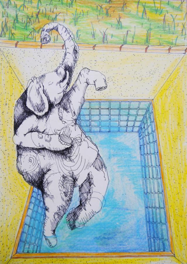 2013-Zeichnung-Freiheit-7-elefant-leicht-drunken-sailor-Luisa-Pohlmann-Kunst-Berlin