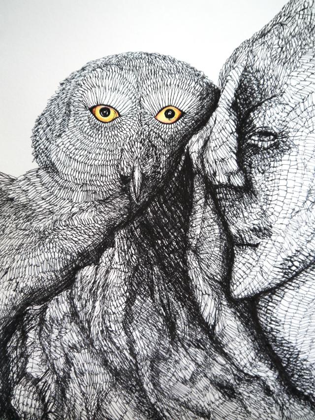 2014-Zeichnung-Kosmos-5-eule-augen-flügel-Luisa-Pohlmann-Kunst-Berlin