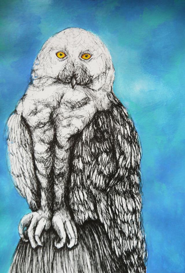 2014-Zeichnung-Kosmos-6-eule-flügel-auge-Luisa-Pohlmann-Kunst-Berlin